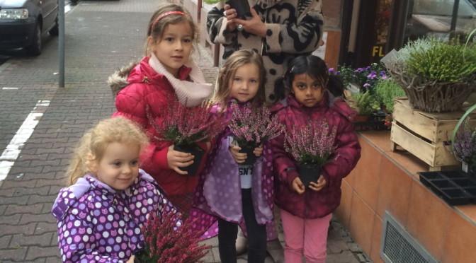 Neue Blumen im Beet