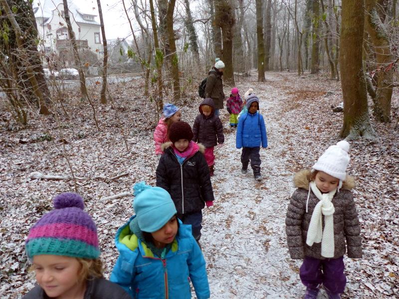 winterwald-2
