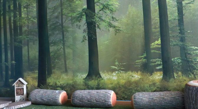 Ich glaube ich stehe im Ruheraum-Wald